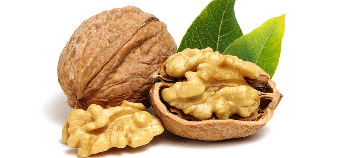 Manfaat Kacang Kenari